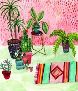 8x10_indoor plants